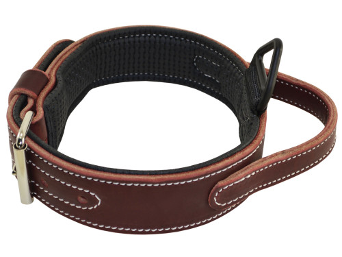Ultimate Padded Leather Collar with Handle