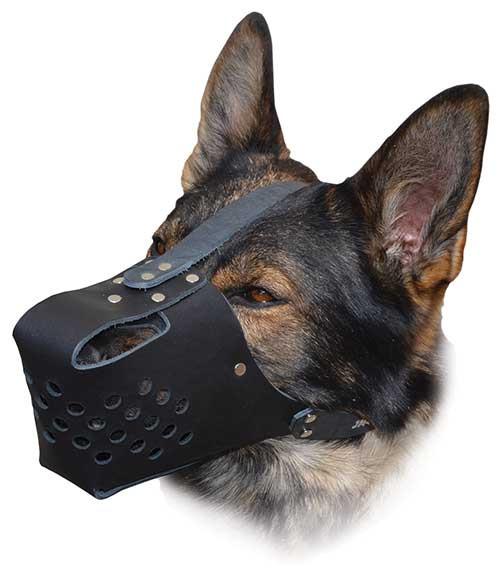 Black RamLite Leather Muzzle