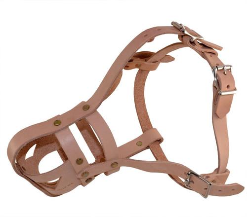 Leather Military Spec Standard Dog Muzzle