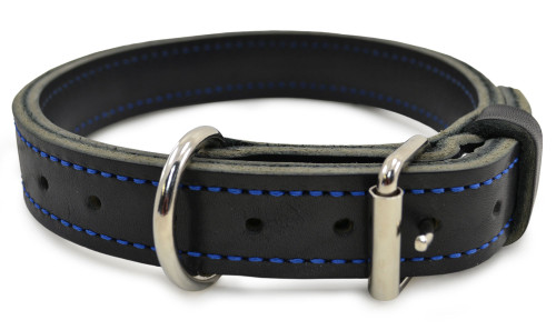 Ray Allen Blue Line Agitation Leather Collar