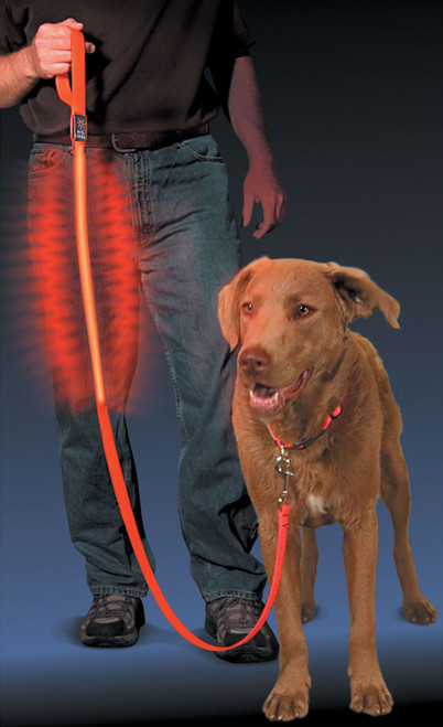 Nite Dawg LED Nylon Dog Leash