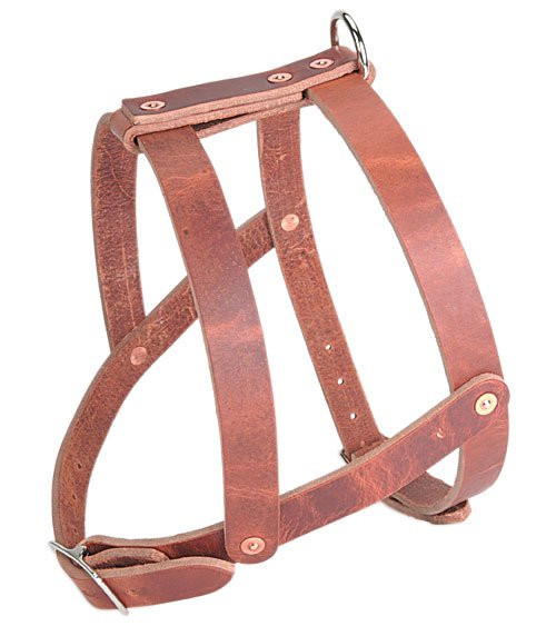 Old World Leather Military Spec Harness