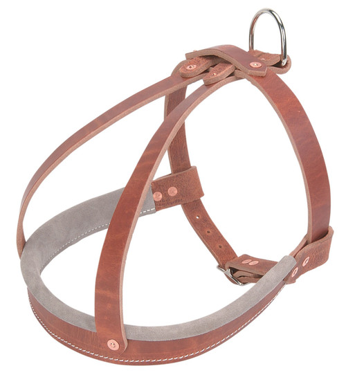 Old World Leather Agitation Harness