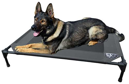 Ray Allen Manufacturing K9 Cot