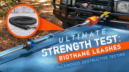 Backwoods Destructive Testing: Biothane Dog Leads