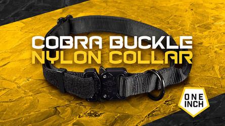 1-Inch Nylon Cobra Buckle Dog Collar- Best Everyday Wear Dog Collar