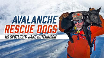 K9 Spotlight: Jake Hutchinson