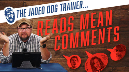 The Jaded Dog Trainer Reads Mean Comments