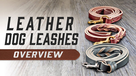 Leather Leashes 101- How to Choose a Quality Leather Dog Leash