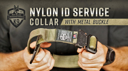 Ray Allen Nylon Service Collar with Metal Buckle- Tough Yet Lightweight Dog Collar