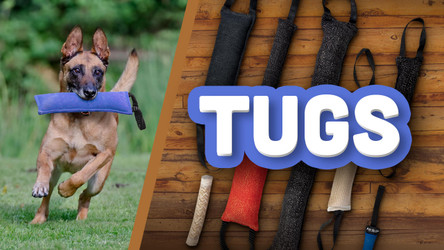 Why Ray Allen Dog Tug Toys Are Vital To K9 Bite Training
