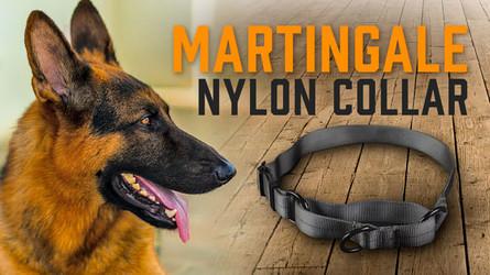 Martingale Nylon Dog Collar- Simple, No-Slip Dog Collar