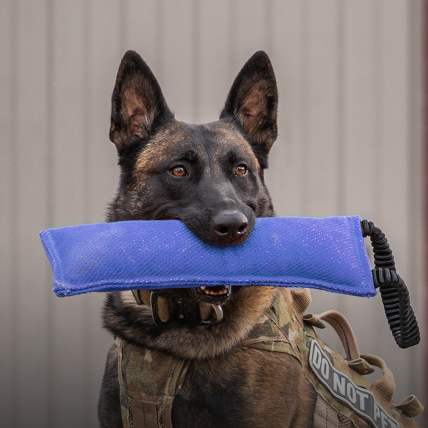 Police Dogs with Leads Set Great Accessories  Brand New New free postage