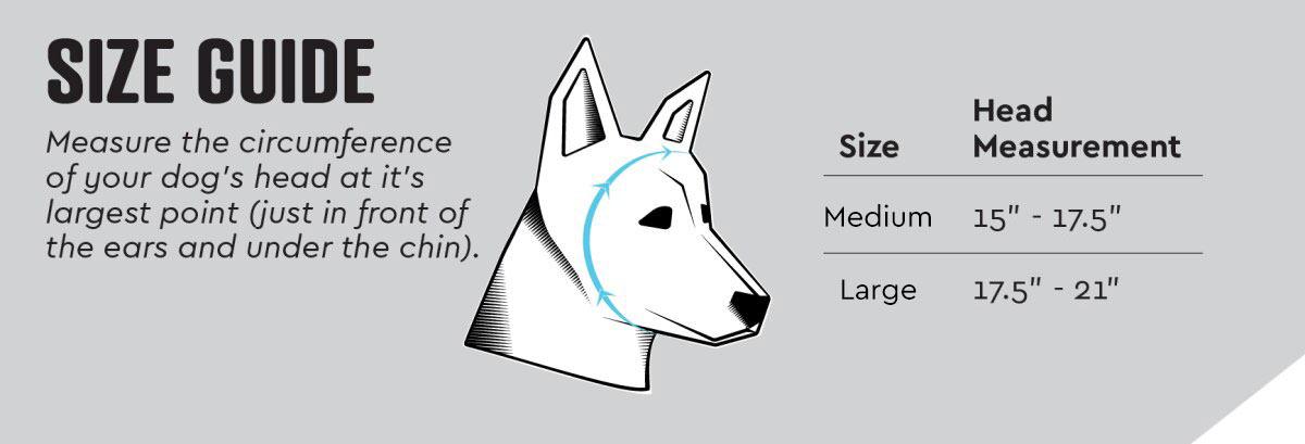 Rex Specs Ear Pro Size Chart Guide