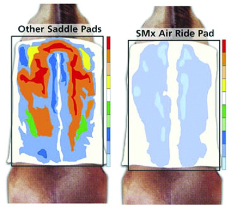 Science Drives the development of Professional's Choice Air Ride Pads!  Professional's Choice does not just make unproven claims regarding our products. Instead, they take a scientific approach to their designs and the engineering of the materials used.  They examine the facts, and then listen to the consumers who are the ultimate judges. Professional's Choice is the first equine company to have their equipment tested by the engineering departments of leading universities and they continue to uphold that tradition. The diagrams of the pads show the results. The dark red and other colors show pressure spots where the Air Ride Pad shows even distribution!