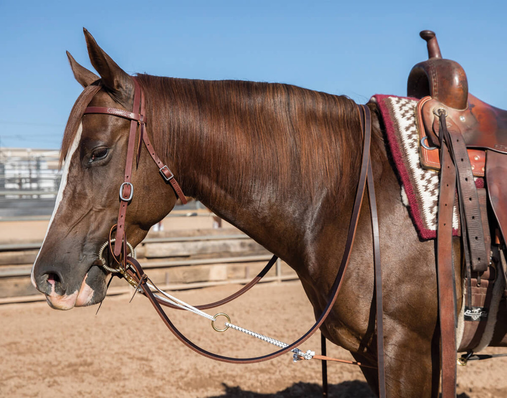 This picture shows the Al Dunning Yo Yo headsetter connected to tack on a horse so you can get a better understanding of how it connects.