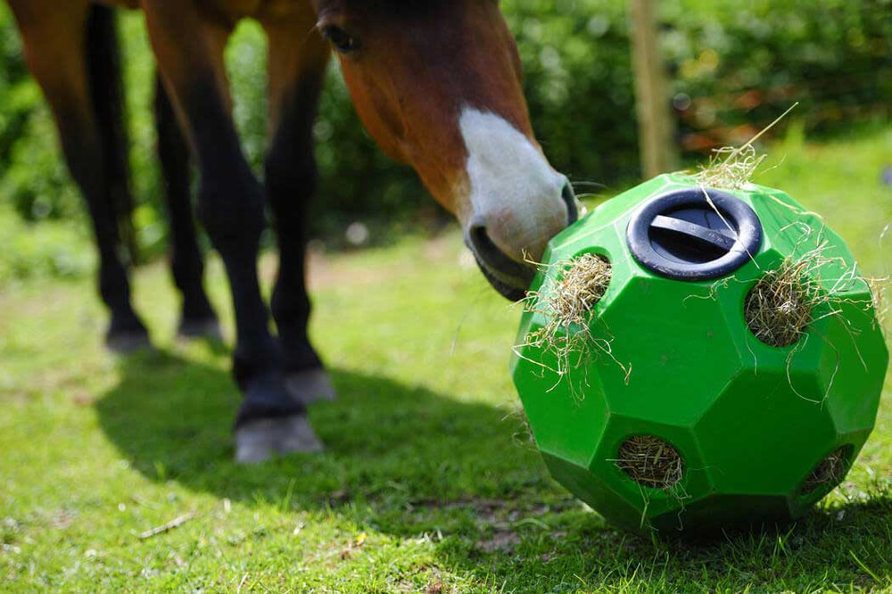 High Country Plastics Hay Play Toy in Green.