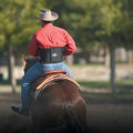 Professional's Choice Comfort-Fit Low Back Support in action - great for supporting your back while on your horse.