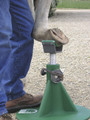 Hoofjack with cradle in use. Shown in green for demonstration purposes; you'll get a purple Hoofjack with your order.