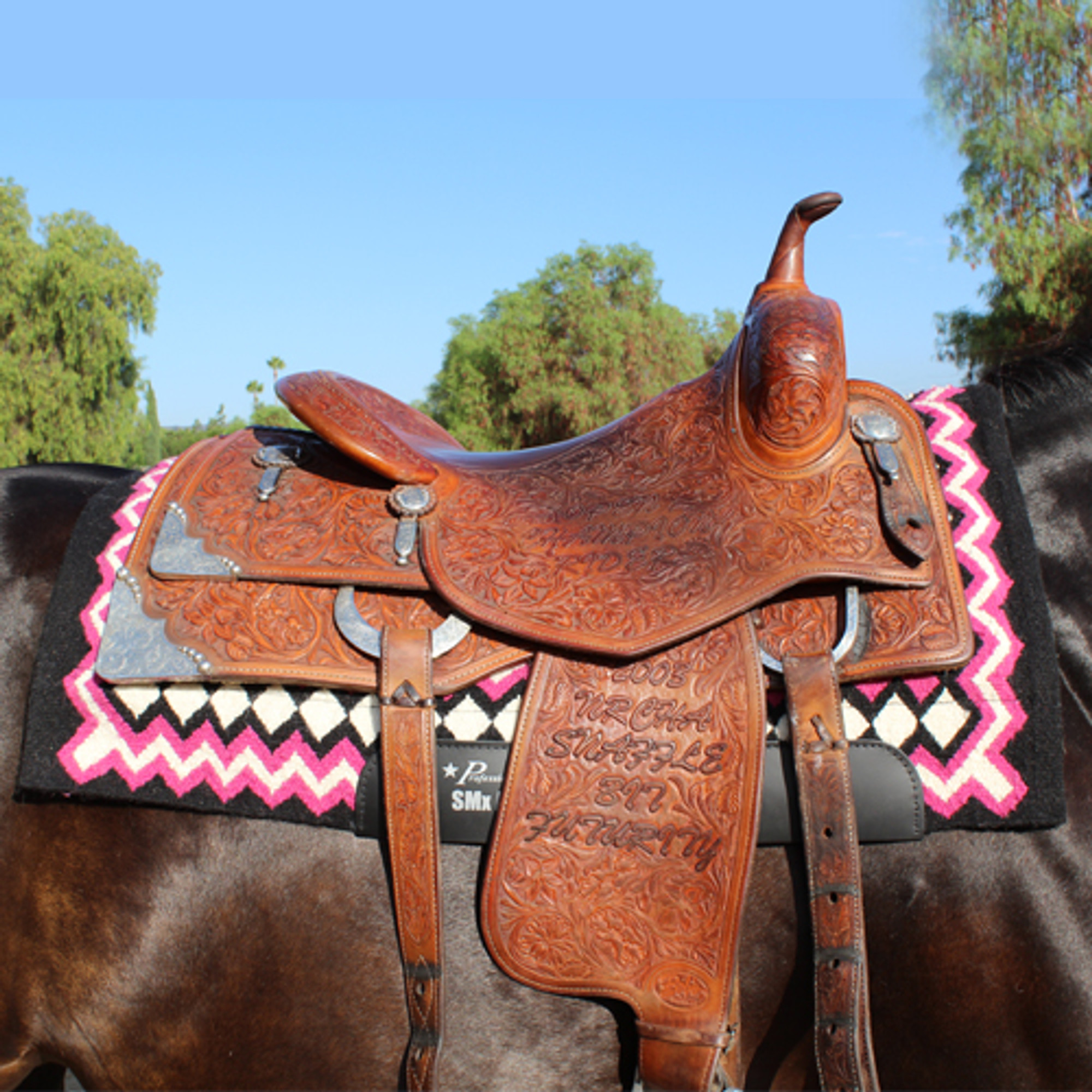 Professional S Choice Shilloh Air Ride Western Pad Best Source