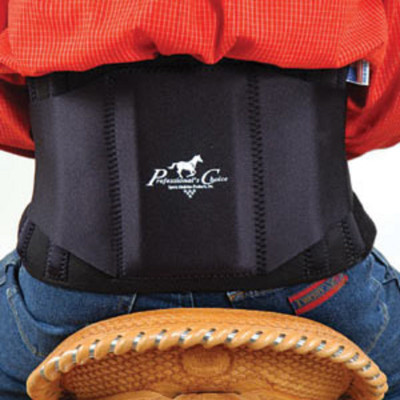 Professional's Choice Comfort-Fit Low Back Support - a best choice for your back.