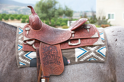 The Professional's Choice El Dorado Comfort Fit Heavy Duty Air Ride Western Saddle Pad is an outstanding pad and suited for a wide range uses including trail riding, show, roping, and every day use.  The pad is available in numerous colors and has a merino wool underside.  Pad shown is the color Charcoal / Pacific but other colors are available in our store at discounthorsesupplies.com