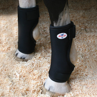 Professional's Choice Bed Sore Boots.  Finally, a solution for horses bruising and developing pressure sores on the foreleg as a result of being down with medical conditions or stalled on hard surfaces.  Prevent injury before you need a vet or heal existing conditions with these great boots.