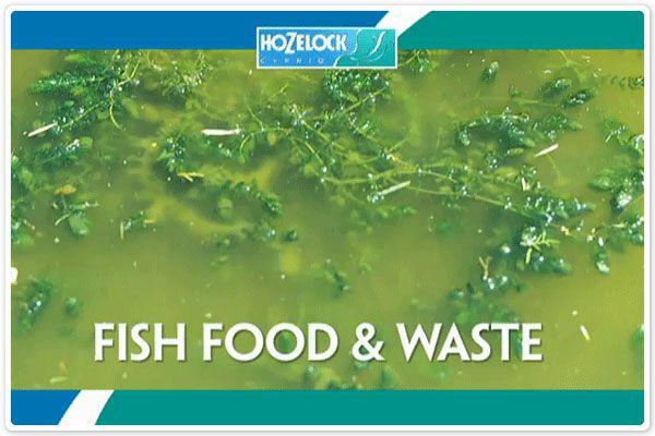 Hozelock PondVac Info Image 3