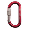 Oval Classic Carabiner