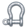 Forged Alloy Anchor Shackle w/ Screw Pin