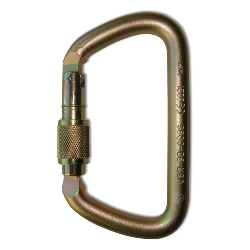 Screw Lock Large D Steel Carabiner