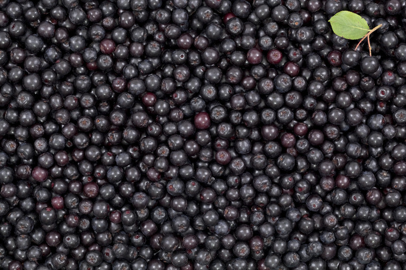 Aronia Berry Skin Care Cuisine