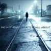 Pat Metheny What's It All About 180g 2LP