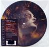 """Disturbed Inside The Fire & Perfect Insanity 45rpm 7"""" Vinyl (Picture Disc)"""