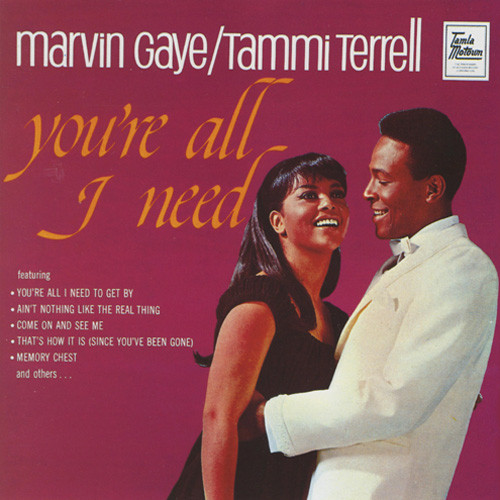Marvin Gaye & Tammi Terrell You're All I Need 180g LP