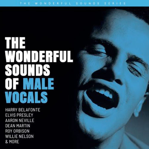 The Wonderful Sounds of Male Vocals 200g 2LP