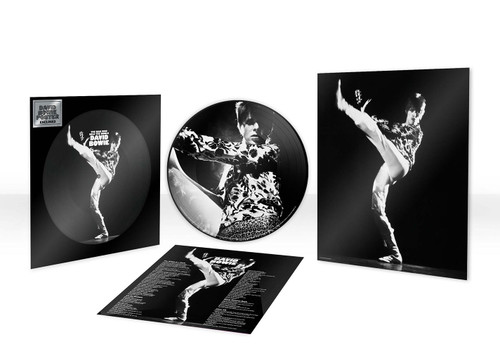 David Bowie The Man Who Sold The World LP (Picture Disc)
