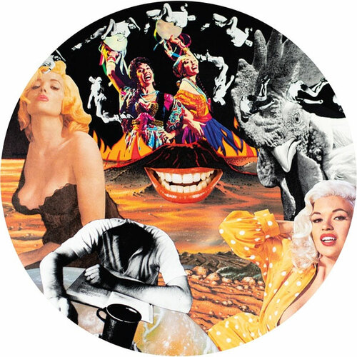 Nurse With Wound Sylvie & Babs Import LP (Picture Disc)