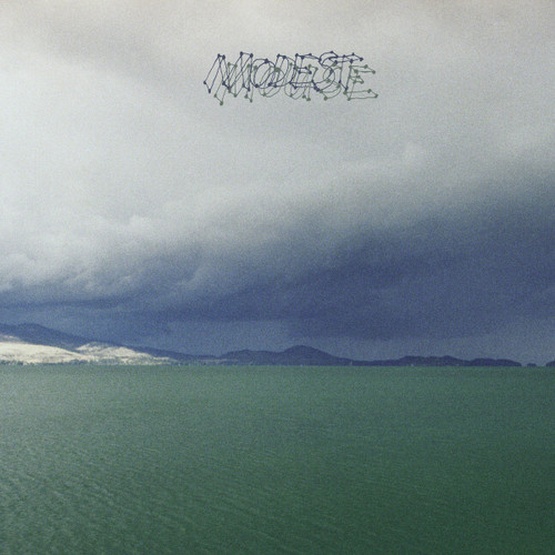 """Modest Mouse The Fruit That Ate Itself 12"""" Vinyl EP"""