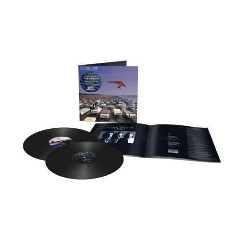 Pink Floyd A Momentary Lapse Of Reason (Remixed & Updated) Half-Speed Mastered 45rpm 180g 2LP