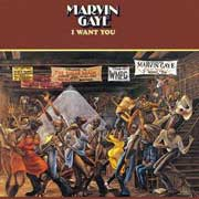 Marvin Gaye I Want You 180g LP