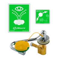 T&S Brass EW-7611 Countertop Mounted Pull Down Eye / Face Wash Unit