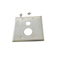 Delany 2172-P Wall Plate