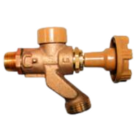 Woodford 101CP Residential Anti-Siphon Mild Climate Wall Faucet.