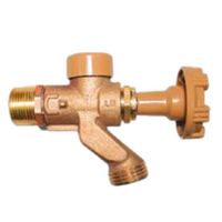 Woodford 101P Residential Anti-Siphon Mild Climate Wall Faucet.