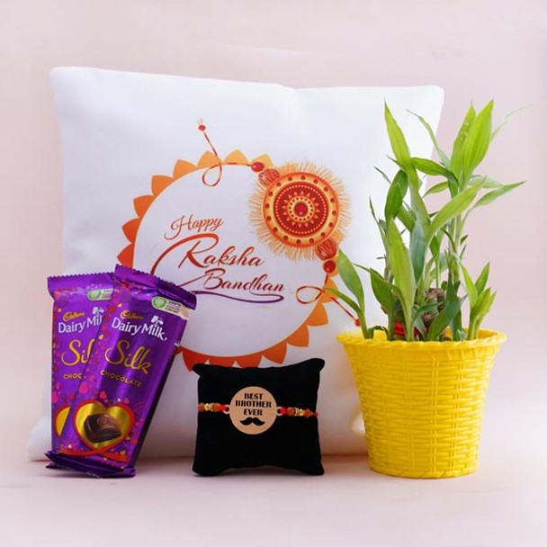 Lucky Bamboo Plant with Bro Rakhi N Rakshabandhan Cushion - For INDIA