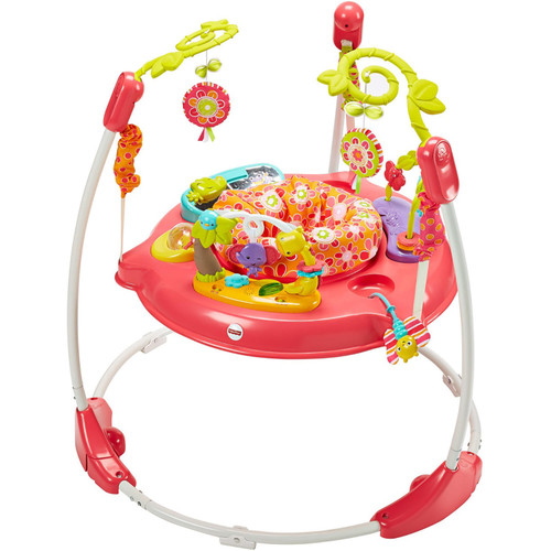 Fisher-Price Jumperoo, Pink Petals - *Special Order