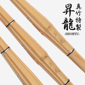 Shinai - Shoryu - Woman (Pack of 3)