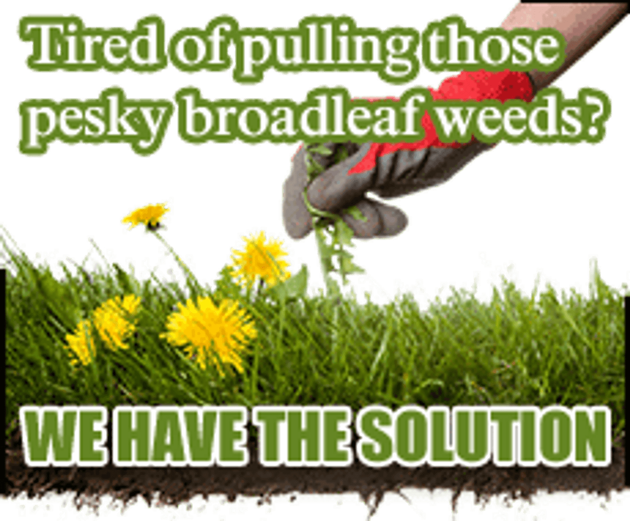Selective Herbicides