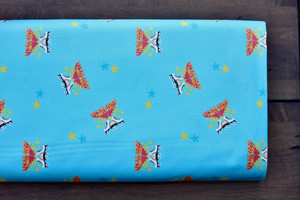 Aqua Roller Derby Cotton